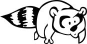 raccoon-run-raccoon-graphic-011617